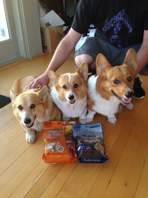 Canidae PURE Heaven Biscuits