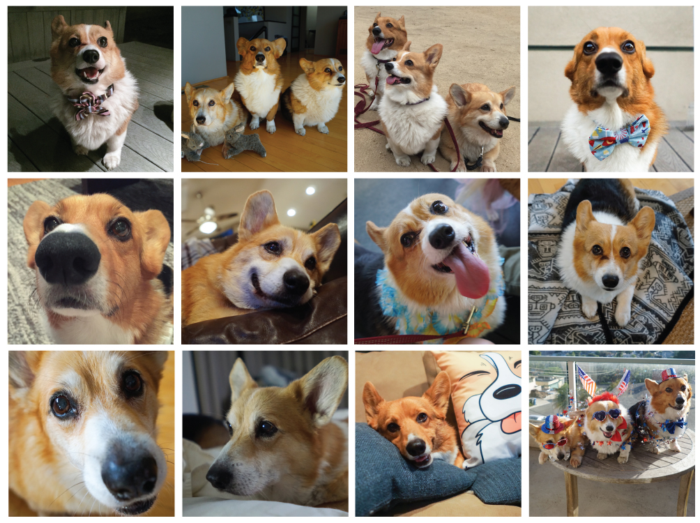 Corgi Calendar 2017 with Three Corgis
