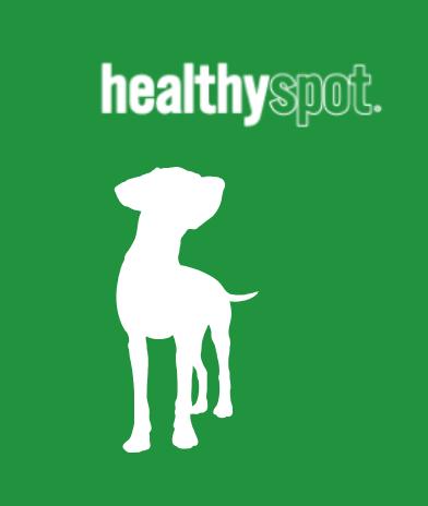 Premium quality pet store