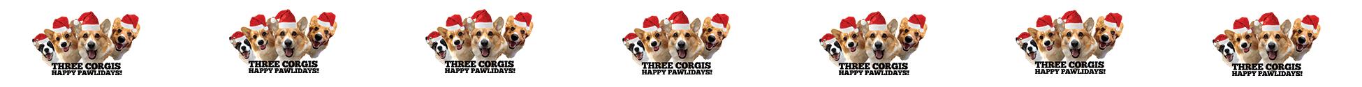 Three Corgis Official Blog